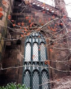 Red berries, church windows, November 30, 2012
