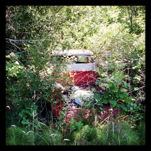 Red and white pick-up, hiding in the bushes, July 11, 2013