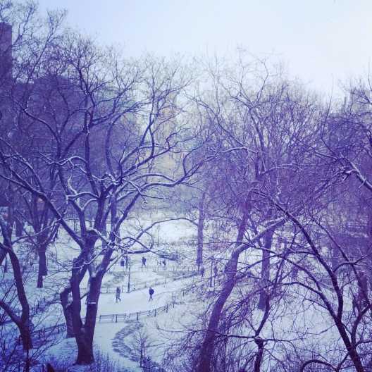 Snowy Washington Square Park, February 26, 2014