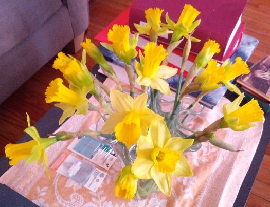 Yellow petticoats, March 26, 2014