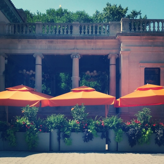 Orange umbrellas, August 27, 2014