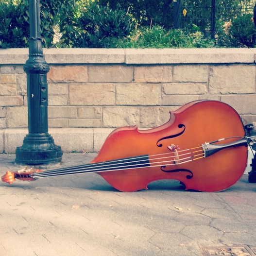 Bass viol, October 24, 2014