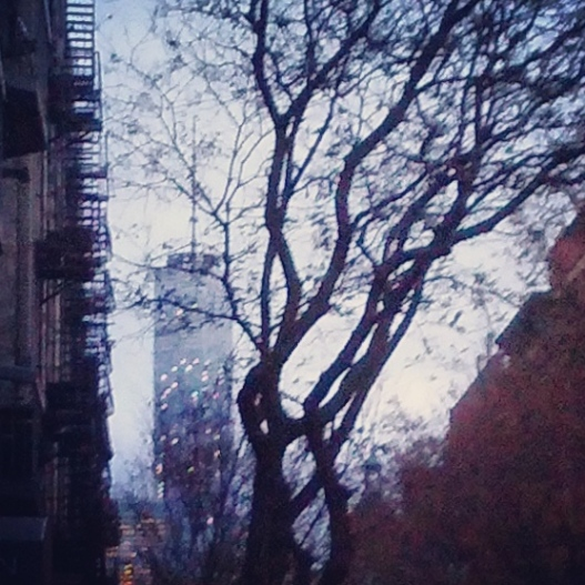 Twinkling Freedom Tower, 4:30 PM November 27, 2014