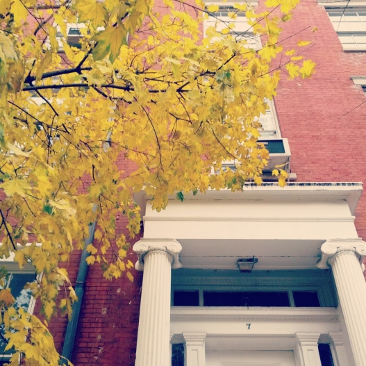 Red brick, neoclassical columns, yellow leaves, December 3, 2014