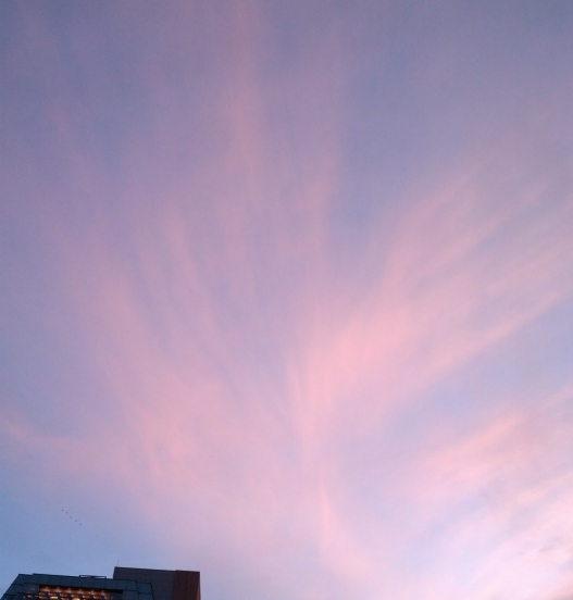 Dusk over Washington Square Park, 4:30 PM December 4, 2014