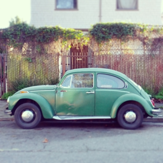 Green bug, December 22, 2014