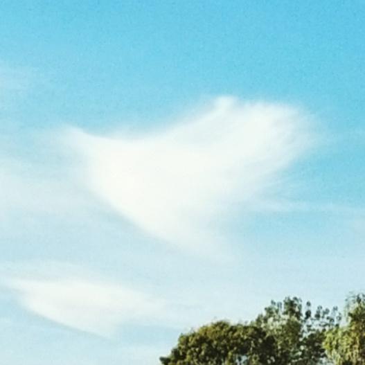 Brush stroke cloud, December 27, 2014