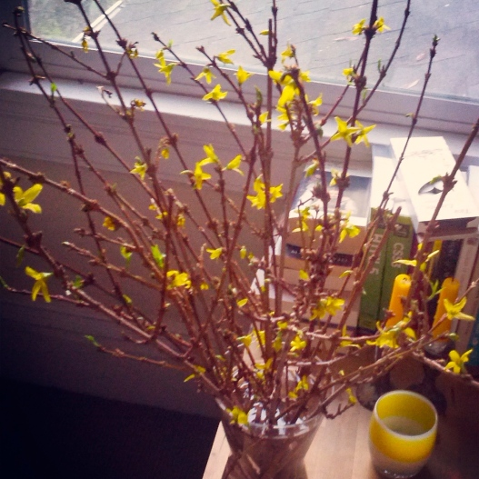 Yellow flowers, yellow candles, January 22, 2015