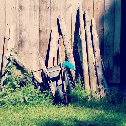 Wheelbarrow against barn, May 5, 2015
