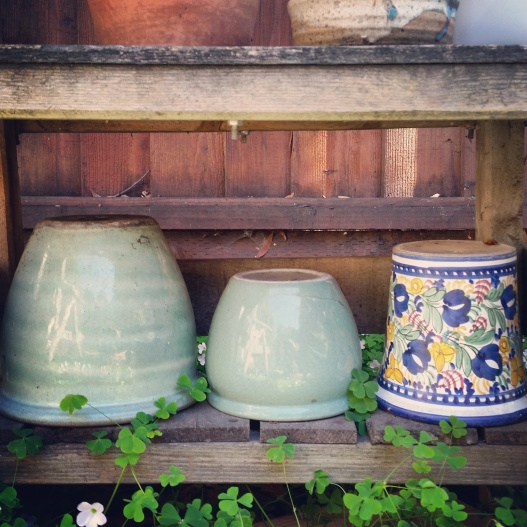 Three empty pots all in a row, May 21, 2015