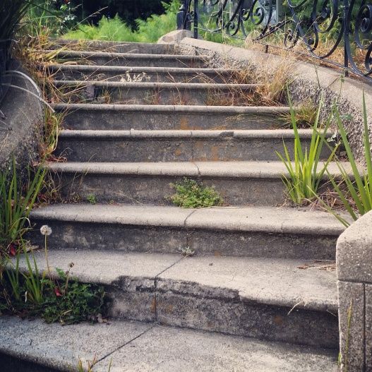 Comfortably vegetated stairway, May 22, 2015