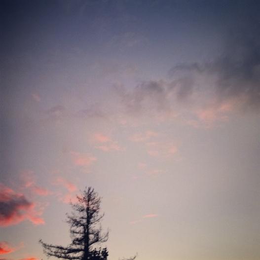 Pink-lined dusk, 5:05 PM November 3, 2015